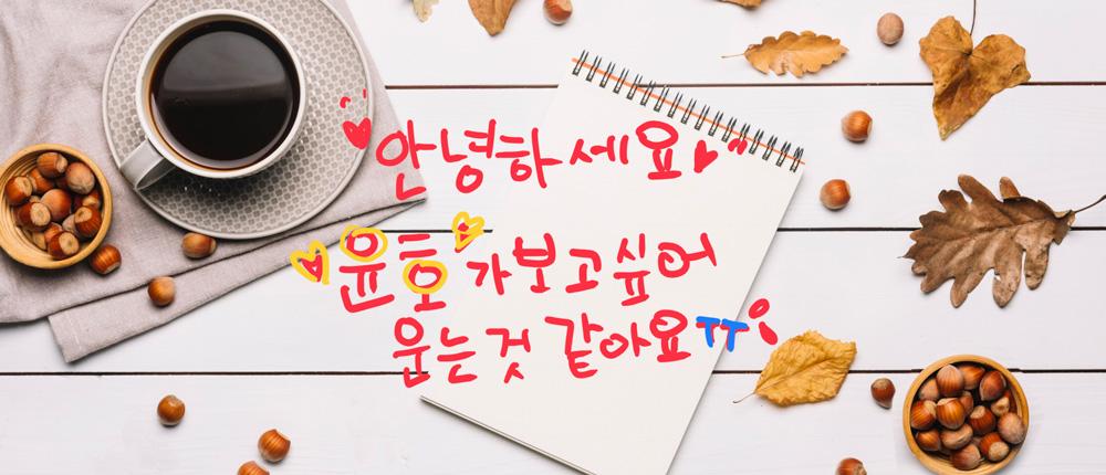 『ぐん活のすすめ』韓国語を習う。その5